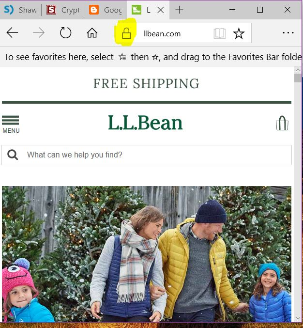 Safe Online Christmass Shopping