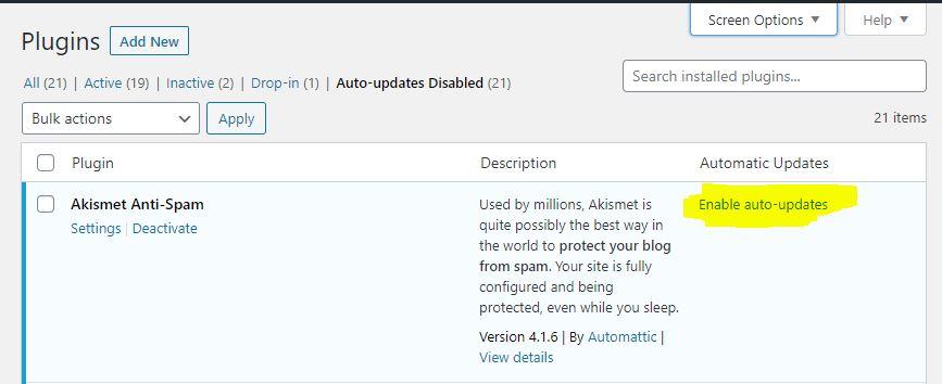 WordPress enable autoupdates